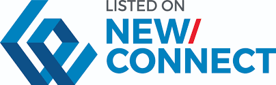 New Connect logo